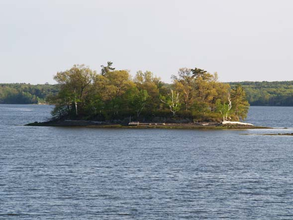 An island off the shore of Adams Point (photo by Webmaster)