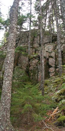 Cliffs on Beech Mountain's eastern flanks (photo by Webmaster)