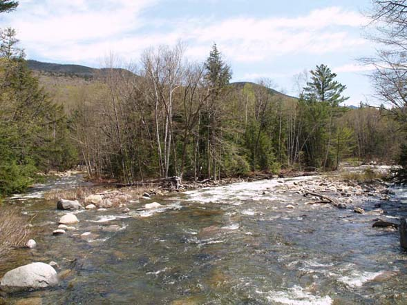 Franconia Brook from bridge (photo by Webmaster)