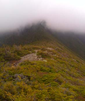 The summit of Mount Carrigain cloaked in clouds (photo by Bill Mahony)