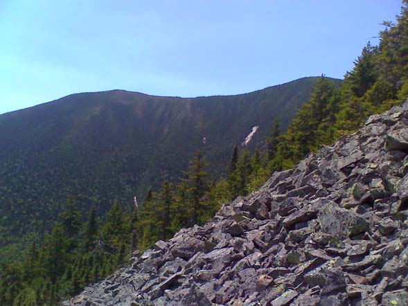 Signal Ridge from a talus slope beneath Vose Spur (photo by Bill Mahony)
