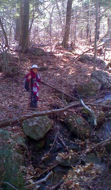 Hiking along a brook (photo by Bill Mahony)