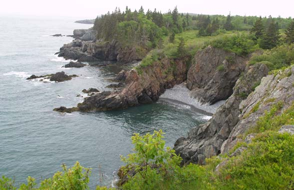Ocean, cliffs, cobble beach, and semi-forested plateau (photo by Webmaster)