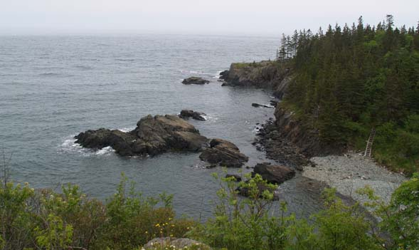 The Bold Coast, cobble beach, and ladder at Cutler Coast Preserve (photo by Webmaster)