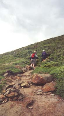 Crawford Path between Mt. Pierce and Mt. Eisenhower (photo by Webmaster)