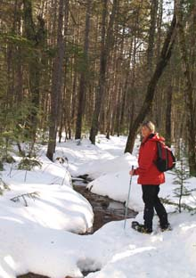 Patty on the puddle-filled section of Lower Nanamocomuck Ski Trail (photo by Webmaster)