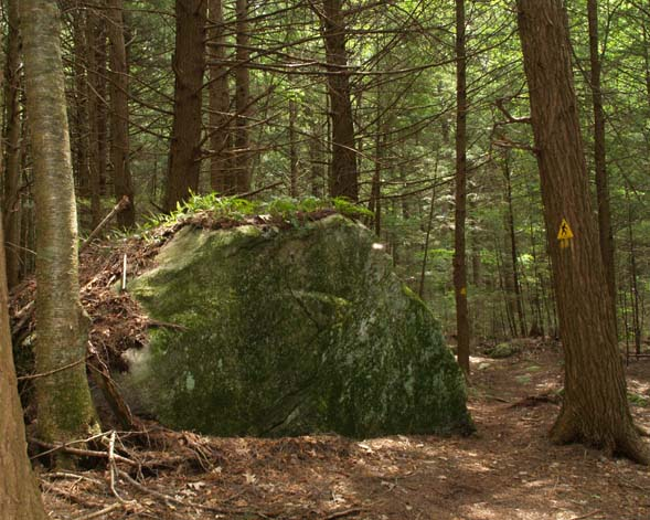 Trail-side boulder (photo by Webmaster)