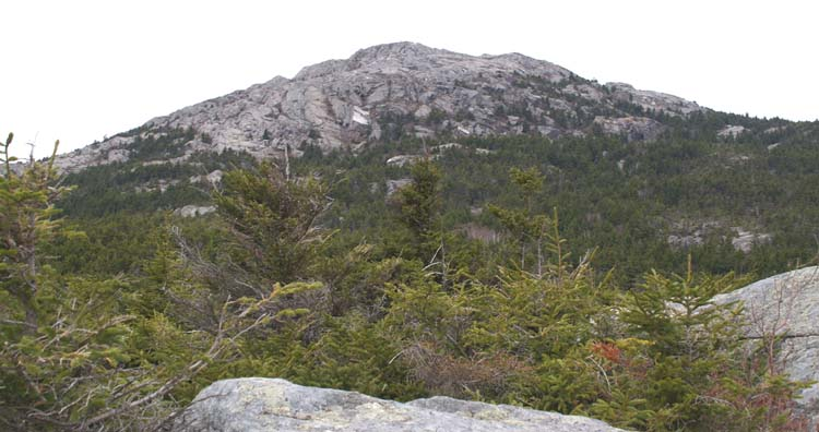 View of Mt. Monadnock peak from Bald Rock (photo by Webmaster)