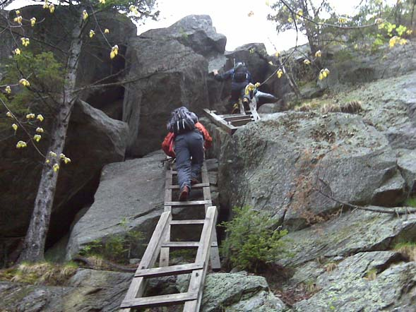 Ladders leading up to Mt. Morgan (photo by Diane King)