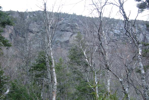 Cliffs on East Osceola's north spur (photo by Bill Mahony)