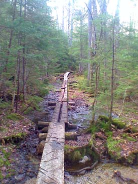 Bog bridges (photo by Bill Mahony)