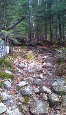 Rocky trail (photo by Bill Mahony)