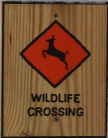 """Wildlife Crossing"" sign (photo by Webmaster)"