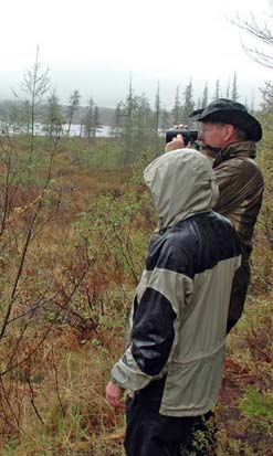 Birding (photo by Ben Kimball for NH Natural Heritage Bureau)