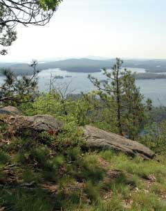 Ledges on top of West Rattlesnake Mtn. (photo by Dan Sperduto for the NH Natural Heritage Bureau)