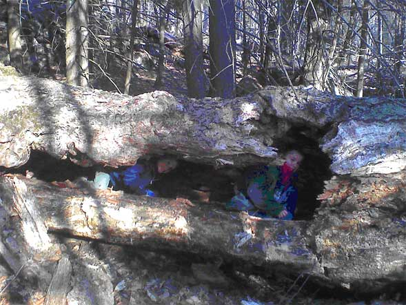 Jacob and Joshua crawling through the big hollow log (photo by Bill Mahony)
