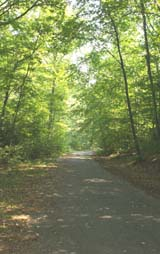 Paved section of woods road (photo by Webmaster)