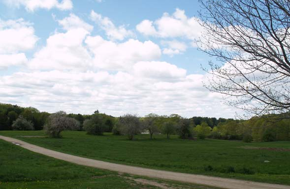 View of gravel trail and apple orchard from next to the upper parking area (photo by Webmaster)