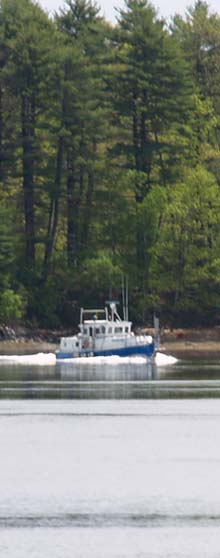 Boat on Oyster River (photo by Webmaster)