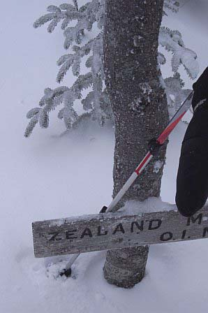 Zealand Mountain spur sign barely visible just above the snowpack (photo by Rachel Bowles)