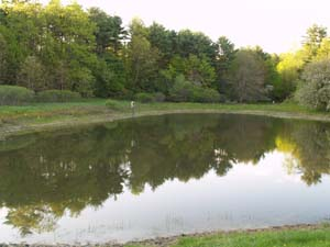 Pond (photo by Webmaster)