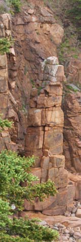 30-foot high sea stack along Ocean Path (photo by Webmaster)