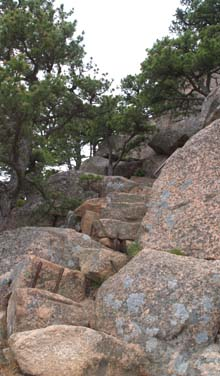 Rock staircase on Beehive Trail (photo by Webmaster)