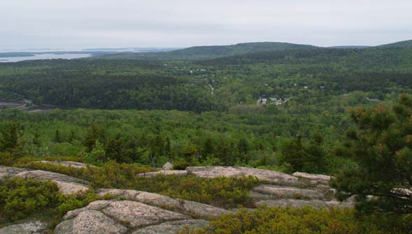 Views from Gorham Mtn. (photo by Webmaster)