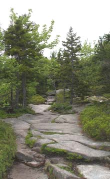 Gorham Mountain Trail (photo by Webmaster)