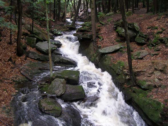 Wilde Brook running through Chesterfield Gorge (photo by Jeff Littlejohn)