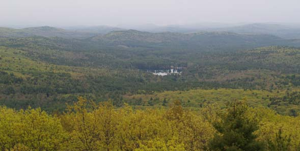 Views, including Moores Pond, looking south from Mount Grace's fire tower (photo by Webmaster)