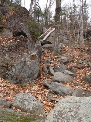 There are lots of rock scrambles on the Cliff Walk path to Mt. Monadnock (photo by Webmaster)