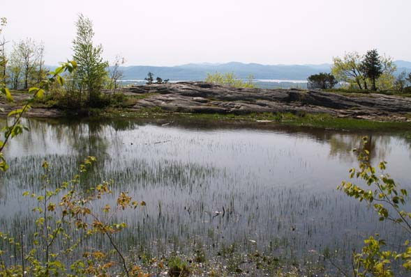 Red Rock Pond and view to the Adirondacks (photo by Webmaster)