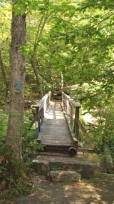 Footbridge over Falls River (photo by Webmaster)