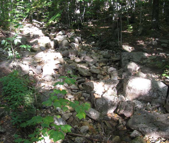 Dry, rock-filled stream at the second crossing of Tecumseh Brook (photo by Karl Searl)